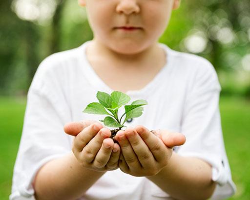 Soframap environnement et developpement durable